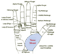Palmistry: MOUNTS